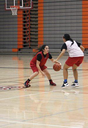 wbasketball1