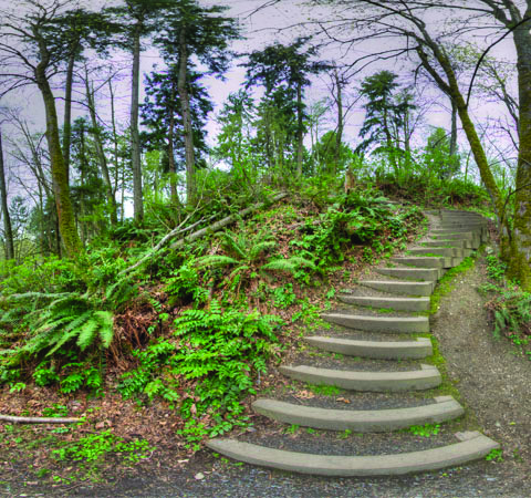 The greenery and stairs at Big Gulch make it a beautiful place to walk through.