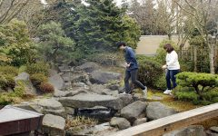 Japanese Garden: A Piece of Japan at EvCC