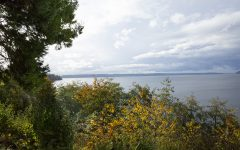 PNW Outdoors: Howarth Park