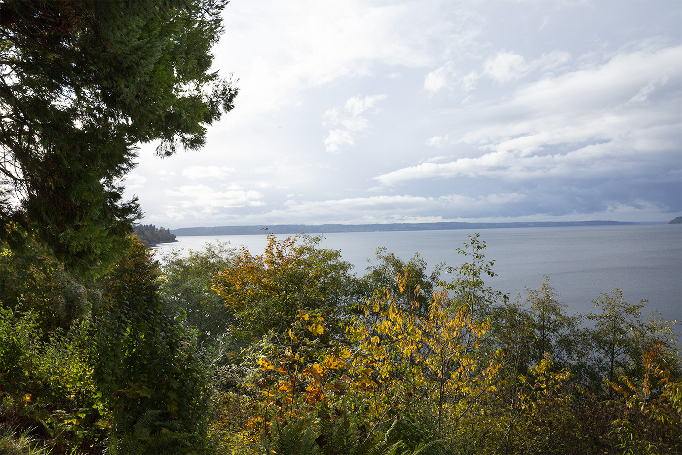 View of the Puget Sound from the middle level lookout of Howarth Park.