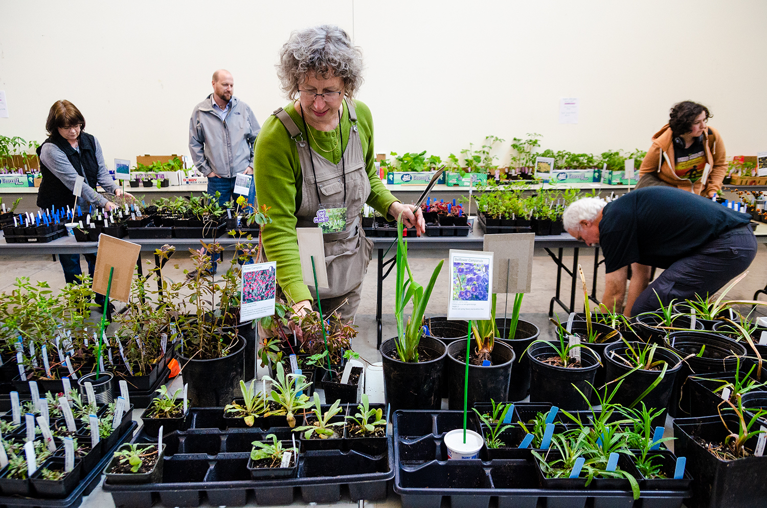 Students, staff and community members browse the 2018 plant swap and sale in Whitehorse Hall. This year's event will take place on Tuesday, April 23, from 10 a.m. -1 p.m. in the Whitehorse Hall Critique Space.