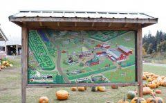 Local Entertainment: Bob's Corn and Pumpkin Farm