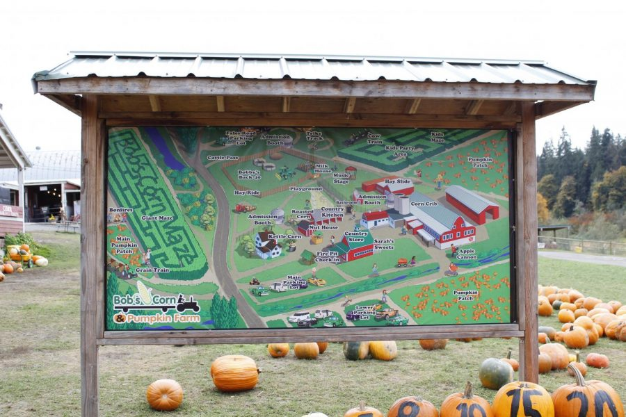 Map of Bob's Corn and Pumpkin Farm shows the location of their many amenities. Activities at Bob's include a corn maze, hay rides, and a cozy county story on site.