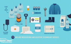 Emergency supplies infographic.