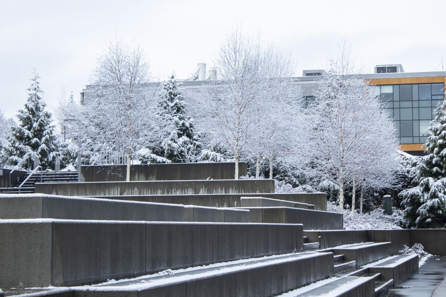 EvCC's Whitehorse Hall covered in a layer of snow on Monday, Jan. 13, 2020, which was the first day of campus closures.