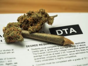 Cannabis and College Students: Help or Hindrance?