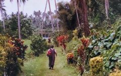 Cynthia Clarke, pictured walking into the tropical foliage.