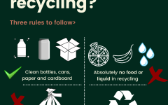 3 Basic Rules to follow for recycling, all information from Waste Management.