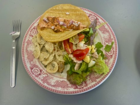 Pictured is one students plate before we all sat down to eat outside. On the plate is the salmon fish tacos, clam pasta, and nicoise salad.